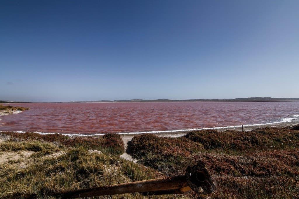 Alam liar Australia Barat. Foto: Maria S Sinurat