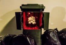 Keindahan dalam tong sampah-OZIP